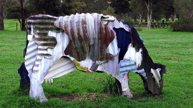 Tin Cows, Jeff Thompson
